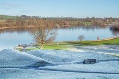 Landslandskap på sjön på en frostig dag arkivbild