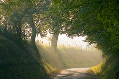 landslane Royaltyfria Bilder
