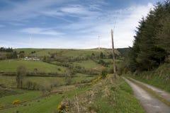 Landslane i den irländska bygden Royaltyfri Fotografi