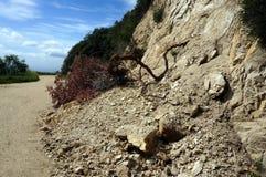 landslide Fotografia Stock