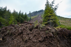Landslide due to deforestation. Big landslide in the mountains due to deforestation Royalty Free Stock Photography