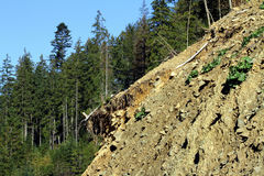 Landslide in the mountains to Synevyrskiy pass. royalty free stock photos