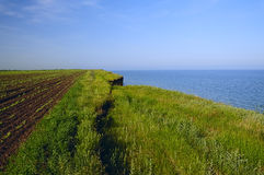 Landslides agricultural land in the sea. Royalty Free Stock Photo