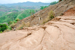 Landslides during in the rainy season Stock Photography