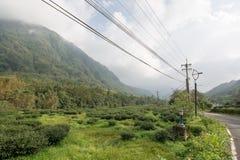 Landspace in alishan Stock Afbeeldingen