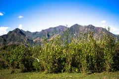 Landspace av Muon La, Son La, Vietnam Royaltyfria Bilder
