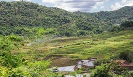 Landspace av Muong La, Son La, Vietnam arkivfoto