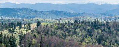 Landspace de montagne de l'Ukraine Panorama photo stock