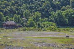 Landspace del La de Muon, Son La, Vietnam Foto de archivo libre de regalías