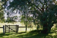 landsport Arkivbild