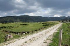 landspyrenees väg Arkivbild