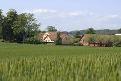 landsroman Arkivbild