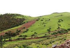 Landssikt på Tibet Arkivbild