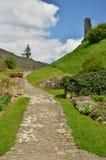 Landstejn Castle Remains x Stock Image