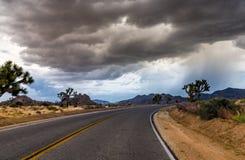 Landstraße bei Joshua Tree National Park, Kalifornien, USA stockbilder