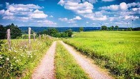 Landstraße am bewölkten Sommertag Feld des grünen Grases gegen einen blauen Himmel mit wispy weißen Wolken stock footage
