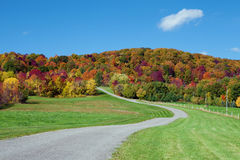Landstraße in den Herbstfarben Lizenzfreies Stockbild