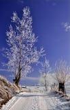 Landstraße in der winterlichen Landschaft Lizenzfreies Stockfoto