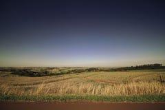 Landstraße, die durch Feld überschreitet Stockbild