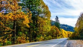 Landstraße 7, die Lougheed-Landstraße nahe der Regelung von Deroche in den Fall-Farben in Fraser Valley lizenzfreies stockfoto