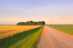 Landstraße durch Bauernhöfe Stockfoto