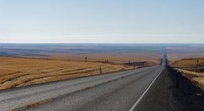 Landstraße durch das Rollen des goldenen Ackerlands Stockfotografie
