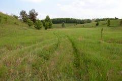 Landstraße durch grüne Felder Stockbild