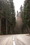 Landstraße durch Herbstwald Stockbilder