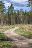 Landstraße ein Holz Lizenzfreie Stockfotografie