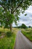 Landstraße entlang drystane Damm in ländlichem Schottland Großbritannien Stockbild