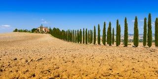 Landstraße grenzte mit Zypressen in Toskana, Italien an lizenzfreie stockbilder