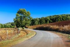 Landstraße grenzte mit Zypressen in Toskana, Italien an stockfotos