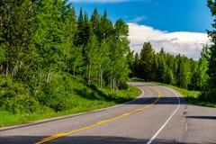 Landstraße in großartigem Nationalpark Teton stockfotos