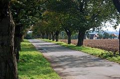 Landstraße im Fall Lizenzfreies Stockbild
