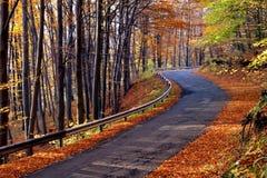 Landstraße im Herbst lizenzfreie stockbilder