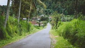 Landstraße im Sediment-Bezirk, Bali-Insel, Indonesien Stockfoto
