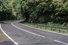 Landstraße im Waldbeton mit Höchstgeschwindigkeitszeichen des sonnigen Tages 50 Kilometer-Stunde Stockfotografie