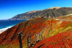 Landstraße 1 in Kalifornien mit colofrful Bergen Stockbilder