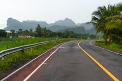 Landstraße mit ländlicher Ansicht lizenzfreie stockbilder
