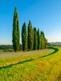 Landstraße mit Reihe von Zypressen Landschaft von Toskana, Italien Lizenzfreies Stockbild