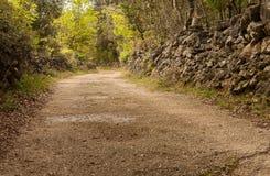 Landstraße mit Steinwänden auf der Insel von Cres Lizenzfreies Stockbild