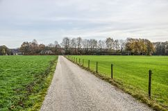 Landstraße mit Wiesen, Bauernhöfen und Scheunen stockbild