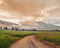 Landstraße mitten in einem grünen Feld der Ernte mit beautuful Wolken Stockbilder