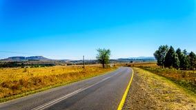 Landstraße R26 mit dem fruchtbaren Ackerland entlang Landstraße R26, in der Freistaatprovinz von Südafrika Lizenzfreies Stockfoto