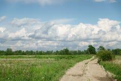 Landstraße und Felder mit Löwenzahn am warmen Sommertag Stockfotos