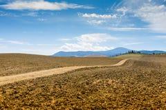 Landstraße und -zypressen auf einem Hügel in Kreta Senesi lizenzfreies stockfoto