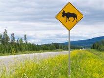 Landstraße warnende roadsign Aufmerksamkeits-Elchüberfahrt Lizenzfreies Stockfoto