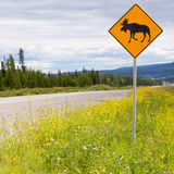 Landstraße warnende roadsign Aufmerksamkeits-Elchüberfahrt Stockfoto