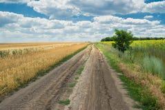 Landstraße zwischen landwirtschaftlichen Feldern Stockfoto