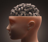 Landstraßen-Gehirn stock abbildung